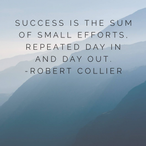 Success is the sum of small efforts, repeated day in and dy out.  Robert Collier