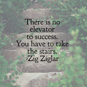 There is no elevator to success.  You have to take the stairs.  Zig Ziglar