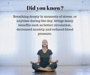 Did you know Breathing deeply in moments of stress, or anytime during the day, brings many benefits such as better circulation, decreased anxiety and reduced blood pressure.